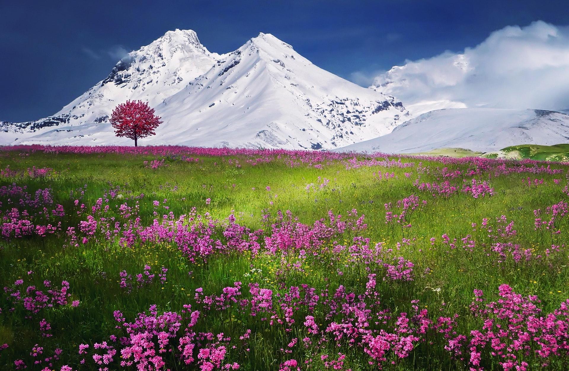 breathtaking-calm-color-36478