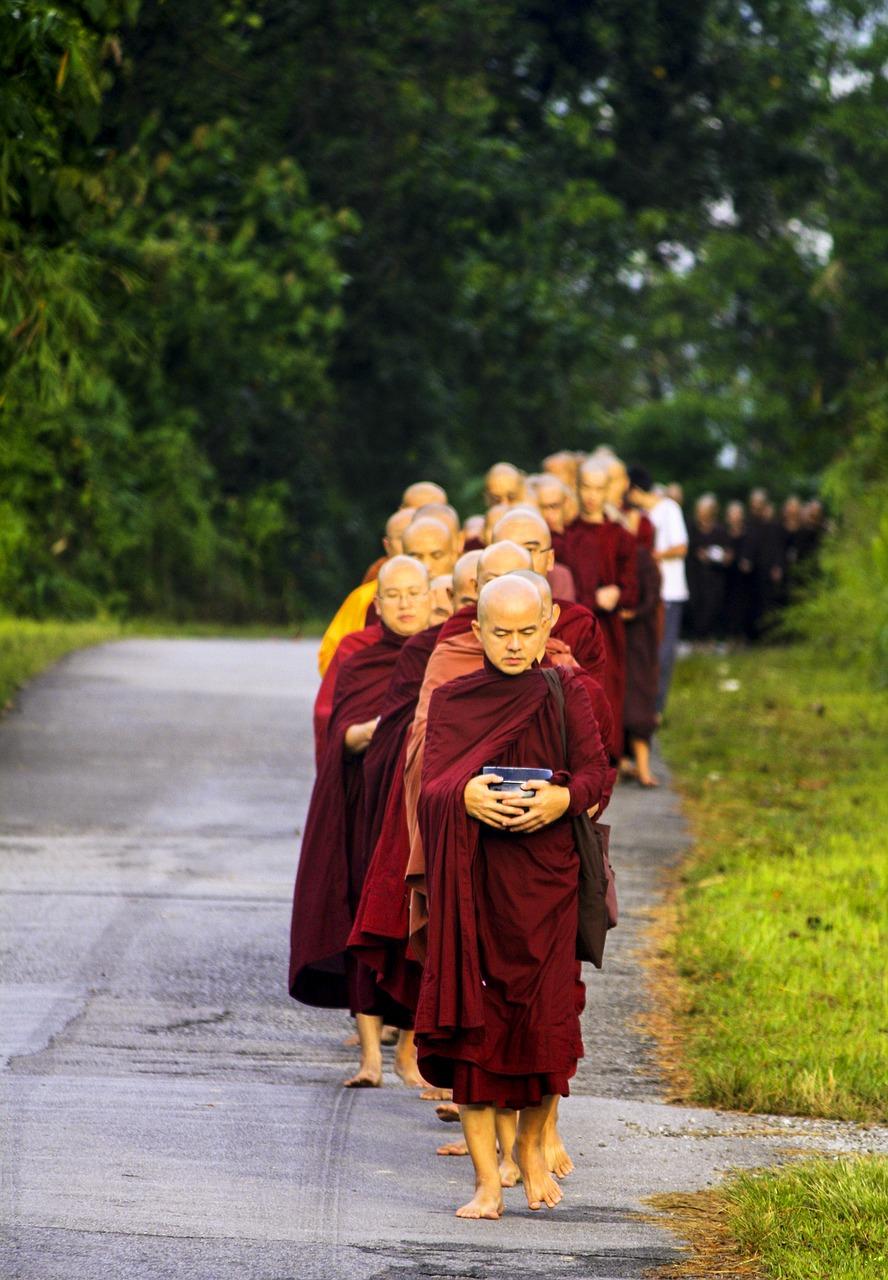 sangha-in-line-1735231_1280